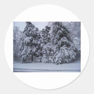 winterstorm2010 (Oklahoma) Pegatina Redonda