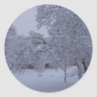 winterstorm2010 (Oklahoma) Etiqueta Redonda