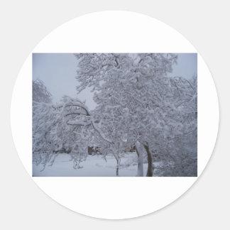 winterstorm2010 (Oklahoma) Pegatinas Redondas