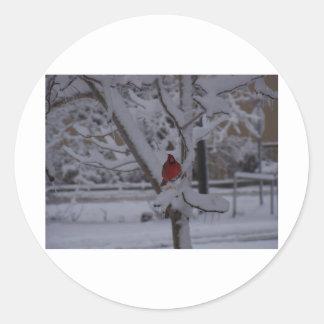 winterstorm2010 (Oklahoma) Etiquetas Redondas