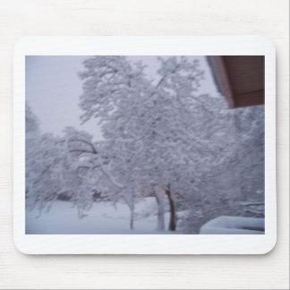 winterstorm2010 (Oklahoma) Tapetes De Raton