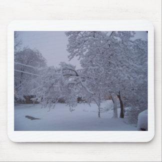winterstorm2010 (Oklahoma) Alfombrillas De Ratones