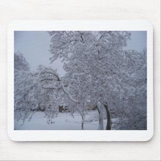 winterstorm2010 (Oklahoma) Alfombrilla De Ratones