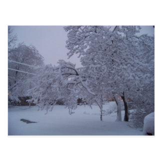 winterstorm2010 (Oklahoma) Postal