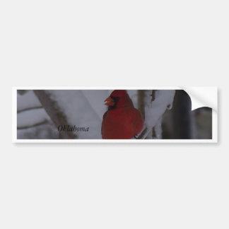 winterstorm2010 (pájaro rojo) pegatina de parachoque