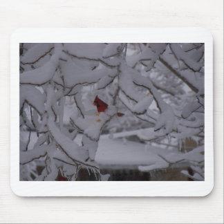 winterstorm2010 (pájaro rojo) alfombrillas de ratón
