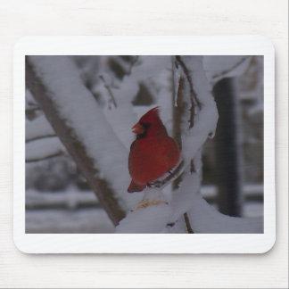 winterstorm2010 (pájaro rojo) alfombrilla de raton