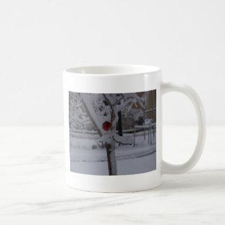 winterstorm2010 (pájaro rojo) tazas