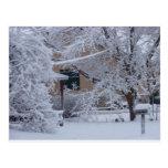 Winterstorm 2010 (Oklahoma) Postal