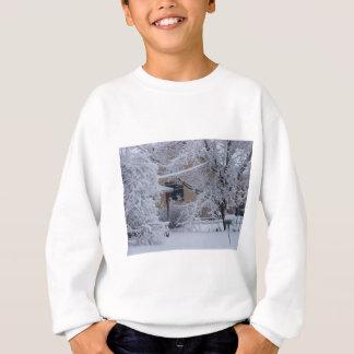 Winterstorm 2010(Oklahoma) Sweatshirt