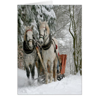 Wintertime Sleigh Ride Card