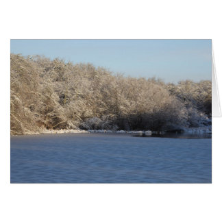 Wintery Pond Tree Lined View Note Card