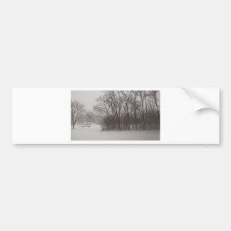 Wintery Trees Bumper Sticker