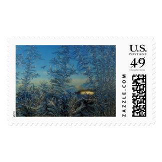 Wintry Blue Stamp