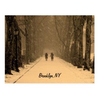 Wintry Brooklyn Postcard