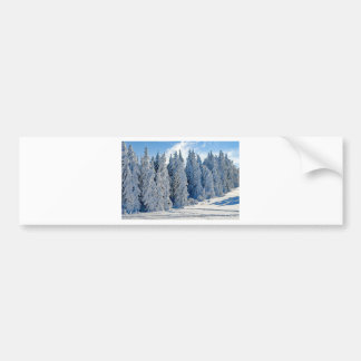 Wintry Snow Firs Snowy Time Of Year Winter Cold Bumper Sticker