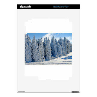 Wintry Snow Firs Snowy Time Of Year Winter Cold Skin For iPad 2