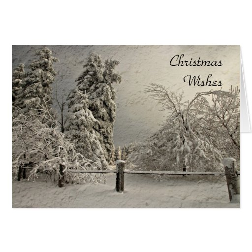 Wintry Snowy Trees - Greeting and Note Card