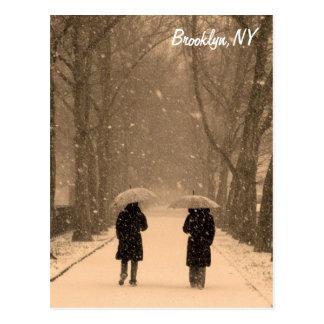 Wintry Walk Brooklyn Postcard