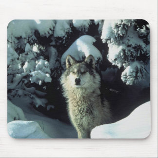Wintry Wolf mousepad