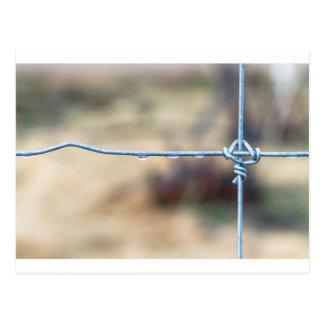 Wire Fence Postcard