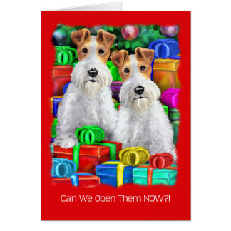 Wire Fox Terrier Open Gifts Christmas Card