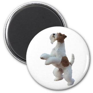 wire hair fox terrier fridge magnet