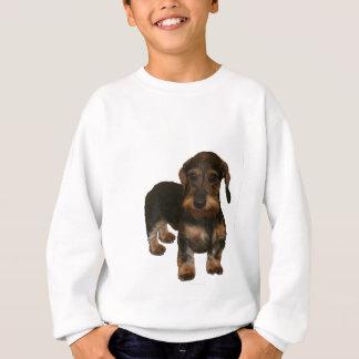 Wire Haired Dachshund Apparel Sweatshirt
