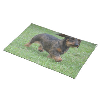 Wire Haired Dachshund Place Mats