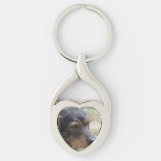 Wire Haired Daschund Dog Keychain