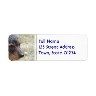 Wire Haired Daschund Dog Label