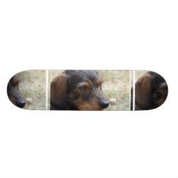 Wire Haired Daschund Dog Skateboard Deck