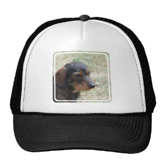 Wire Haired Daschund Dog Trucker Hat