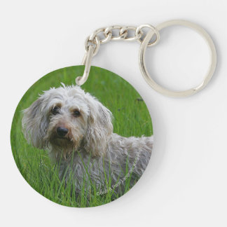 Wire-haired Standard Dachshund in Grass Acrylic Key Chains