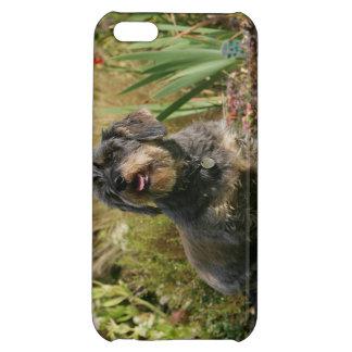 Wire-haired Standard Dachshund iPhone 5C Case