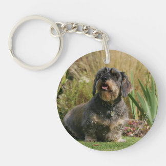 Wire-haired Standard Dachshund Double-Sided Round Acrylic Keychain