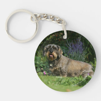 Wire-haired Standard Dachshund Sitting Double-Sided Round Acrylic Keychain