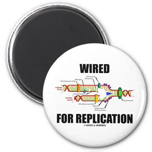 Wired For Replication (DNA Replication) 2 Inch Round Magnet