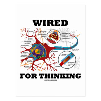 Wired For Thinking (Neuron Synapse) Postcard