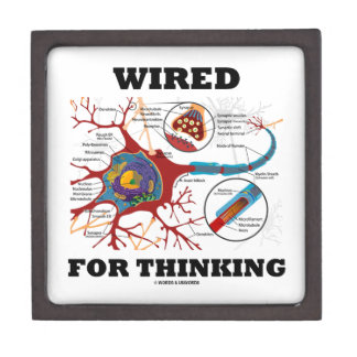 Wired For Thinking (Neuron Synapse) Premium Gift Box