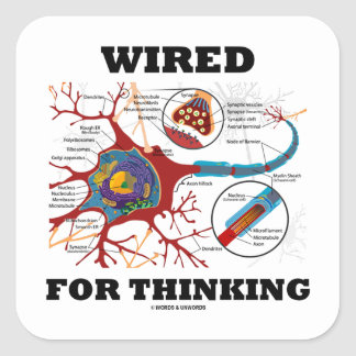 Wired For Thinking (Neuron Synapse) Square Sticker