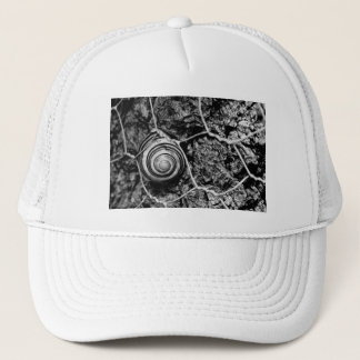 wired pace trucker hat