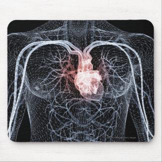 Wireframe de los vasos sanguíneos en el cuerpo alfombrillas de ratones