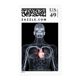 Wireframe de los vasos sanguíneos en el cuerpo envio