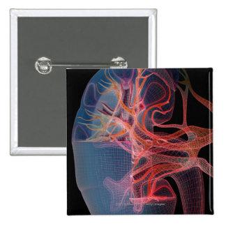 Wireframe del interior de un riñón pin cuadrado