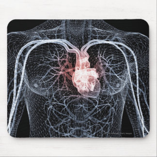 Wireframe of the blood vessels in the upper body mouse pad