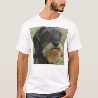 wirehaired dachshund.png T-Shirt