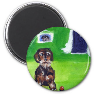 Wirehaired dachshund senses smiling moon 2 inch round magnet