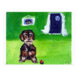 Wirehaired dachshund senses smiling moon postcard