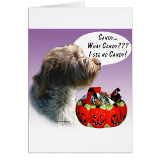 Wirehaired Pointing Griffon Halloween Candy Greeting Card